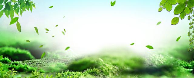 春天绿色植物PPT背景图片